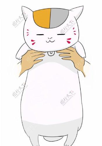呆萌白色小猫图片