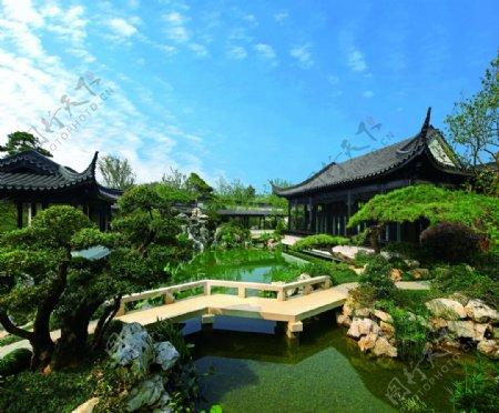 杭州云栖玫瑰园图片