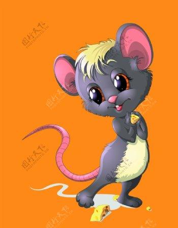 卡通老鼠图片