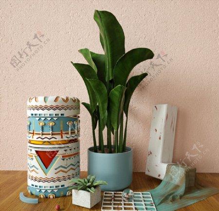 C4D模型桌面装饰品花盆芦荟图片
