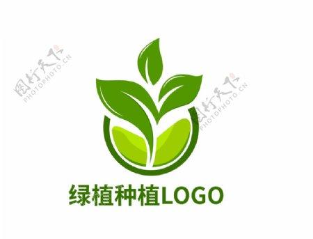logo植物图片